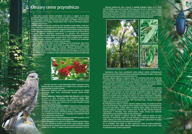 koluszki-04.jpg