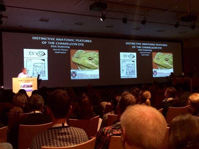 klinika-szulc-konferencja-ecvo-helsinki2.jpg